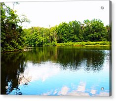 Acrylic Print featuring the photograph Natures Mirror by Deborah Fay