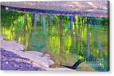 Natures Mirror Acrylic Print by Michele Penner