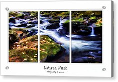 Natures Music Acrylic Print by Darren Fisher