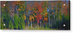 Nature's Paint Brush Acrylic Print by Gary Hall