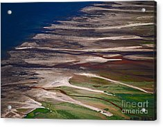 Acrylic Print featuring the photograph Nature's Palette by Cynthia Lagoudakis