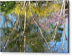 Nature's Reflections Acrylic Print