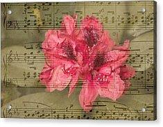 Nature's Tune Acrylic Print