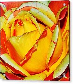 Nature's Vivid Colors Acrylic Print by Kaye Menner
