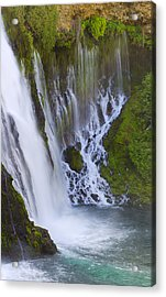 Natures Water Fountain Acrylic Print by Loree Johnson