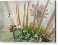 Natures Whimsy Acrylic Print by Angie Vogel