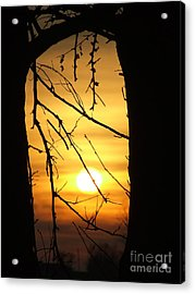 Natures Window Acrylic Print