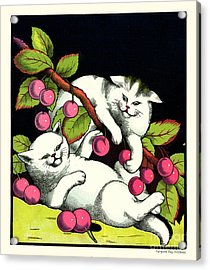 Naughty Cats Play With Cherries  Acrylic Print by Pierpont Bay Archives