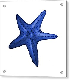 Nautical Blue Starfish Acrylic Print by Michelle Eshleman