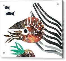 Nautilus Acrylic Print by Earl ContehMorgan