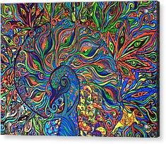 Nautilus Peacock Acrylic Print