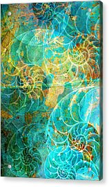 Nautilus Seashells In Aqua Acrylic Print by Suzanne Powers