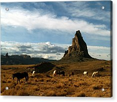 Navajo Horses At El Capitan Acrylic Print