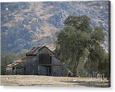 Acrylic Print featuring the photograph Nearly Gone by Debby Pueschel