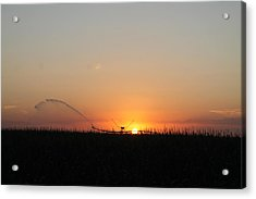 Acrylic Print featuring the photograph Nebraska Sunset by Alicia Knust