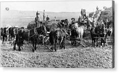 Acrylic Print featuring the photograph Nebraska Threshing, 1886 by Granger