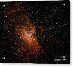 Nebula  M16 Acrylic Print by Chuck Caramella