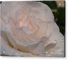 Nectar Of Innocence Acrylic Print