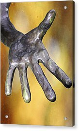 Need A Hand Acrylic Print by Stephen Norris