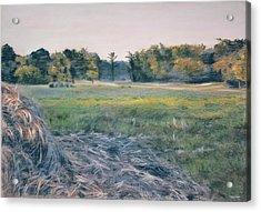Needlestack Acrylic Print by Christopher Reid