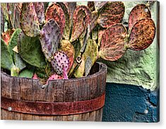 Acrylic Print featuring the photograph Neglect by Beverly Parks