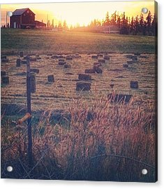 Neighboring Farm At Sunset...have A Acrylic Print by Blenda Studio