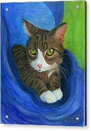 Acrylic Print featuring the painting Neighbor's Cat In Stroller by Jeanne Kay Juhos