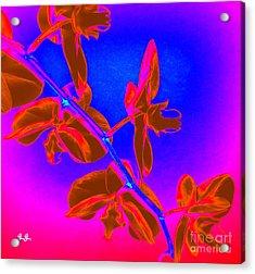 Neon Blooms Acrylic Print by Geri Glavis