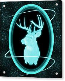 Neon Buck Acrylic Print by Shane Bechler