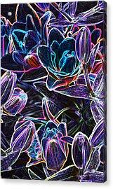 Neon Lilies Acrylic Print
