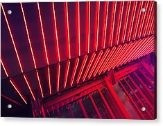 Neon Lit Entrance Acrylic Print by Marcus Lindstrom