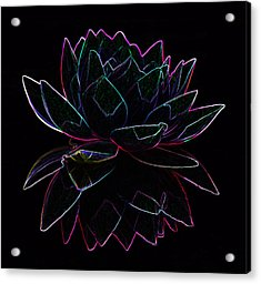 Neon Water Lily Acrylic Print