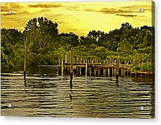 Neshaminy State Park Acrylic Print by Tom Gari Gallery-Three-Photography