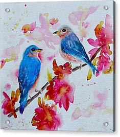 Nesting Pair Acrylic Print by Beverley Harper Tinsley