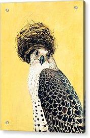 Nesting Series Vii Acrylic Print by Susan McCarrell