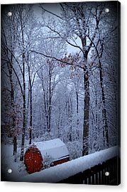 Nestled In Acrylic Print by Diane Leo