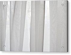 Net Curtain Acrylic Print by Tom Gowanlock