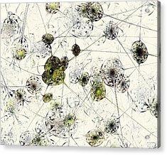 Neural Network Acrylic Print by Anastasiya Malakhova