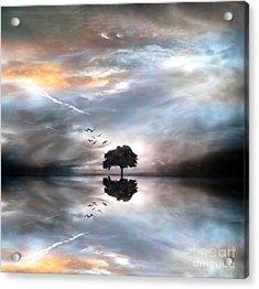 Never Alone Acrylic Print by Jacky Gerritsen