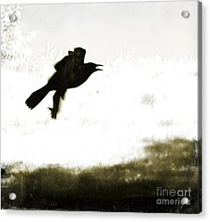 Nevermore Acrylic Print by Roselynne Broussard