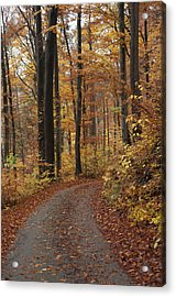 New Autumn Trails Acrylic Print