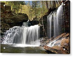 Acrylic Print featuring the photograph New Beginnings At R. B. Ricketts Falls by Gene Walls