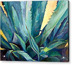 New Blue Agave Acrylic Print by Athena  Mantle