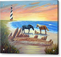 New Day - Hatteras Acrylic Print by Fran Brooks