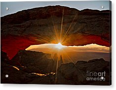 Acrylic Print featuring the photograph New Day by Mae Wertz