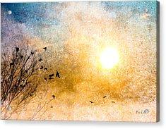 New Day Yesterday Acrylic Print by Bob Orsillo