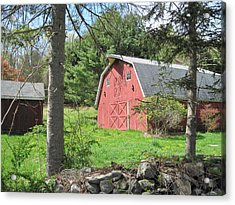 New England Barn Acrylic Print by Marjorie Tietjen
