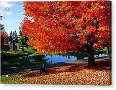 New England Fall  Acrylic Print by Melissa C