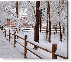 New England Winter Acrylic Print by Dianne Cowen
