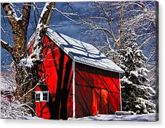 New England Winter Acrylic Print by Karol Livote